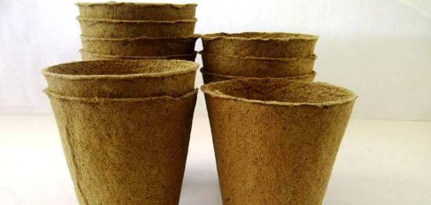 Переваги використання торф'яних стаканчиків
